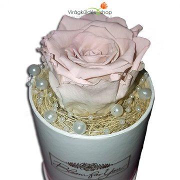 örök rózsa